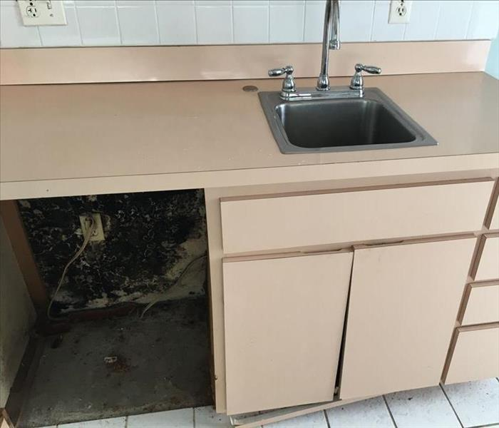 Commercial Restaurant Bathroom Encounters Mold Problem Before