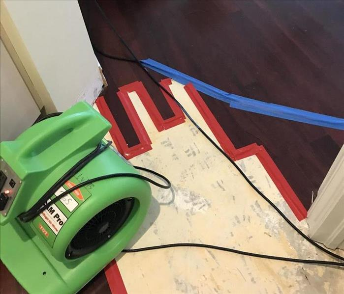Mold Deep In Wood Flooring Causes Damage And Repairs In West Palm Beach After
