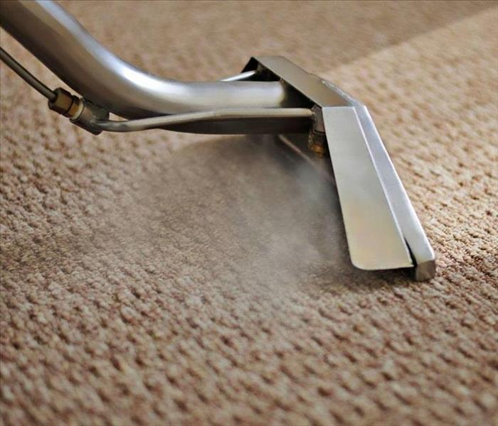 Tips on Getting Mildew Smell Out Of Your Carpet In Your West Palm Beach Home