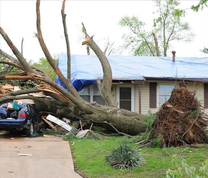 Handling Any Storm Damage With IICRC Trained Technicians And Professional Equipment