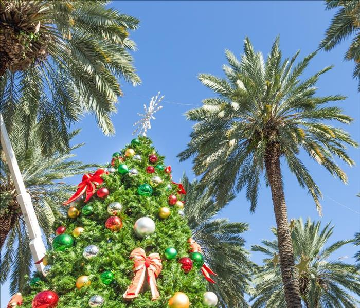 Christmas tree with palm trees in background