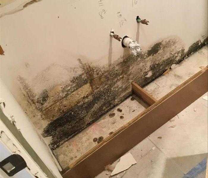 destroyed wall with black mold on it