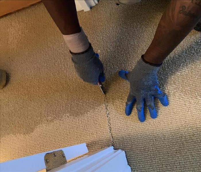 cutting and removing carpet with water damage