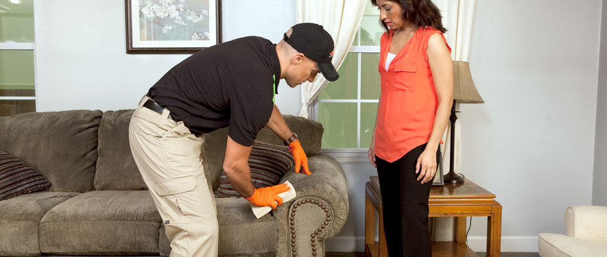 West Palm Beach, FL carpet upholstery cleaning